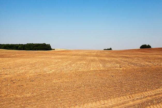 耕作地、夏-穀物の収穫後の農地の耕作地、地面のトラクタートラック