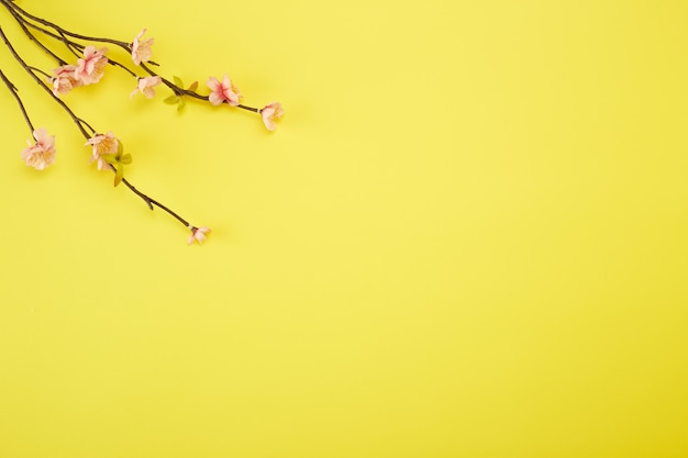 Plum flowers on yellow background