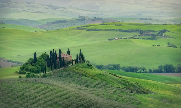 Podere belvedere, tuscany, italy