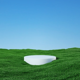 Podium among a field covered with grass under a beautiful sunny sky  3d rendering