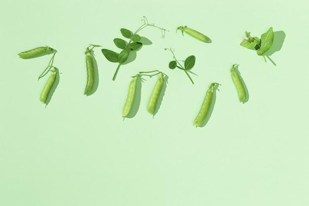 완두콩과 녹색 완두콩 포드 녹색에 나뭇잎