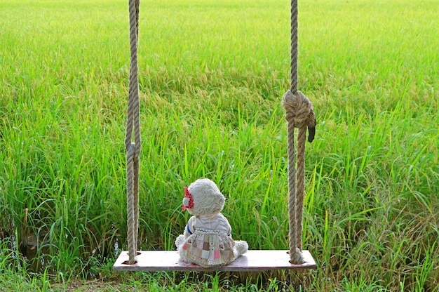 Polar bear soft toy sitting alone on wooden swing with vibrant green paddy fields