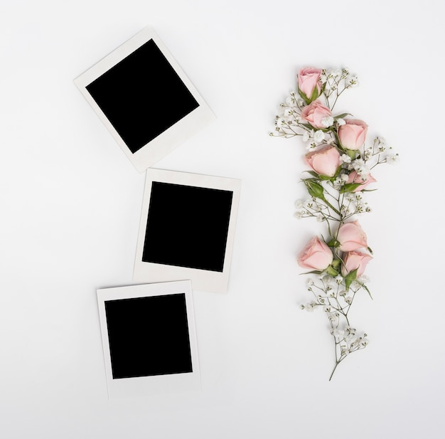 Polaroid blank photos with branch of pink roses