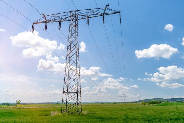 Поляки с высоковольтными проводами на даче