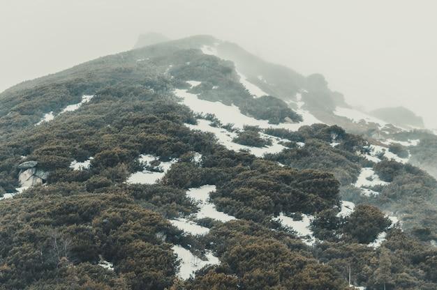 Polish tatra mountains in the fog