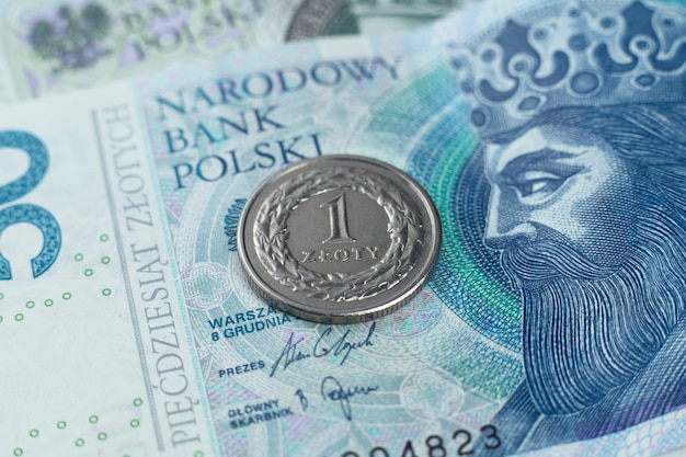 Polish zloty on the banknote