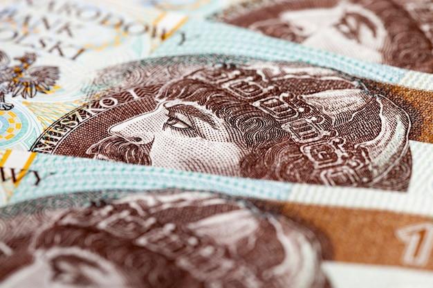 폴란드 즐로티 화폐는 폴란드 영토에서 사용되며 폴란드 국가 통화는 즐로티입니다.