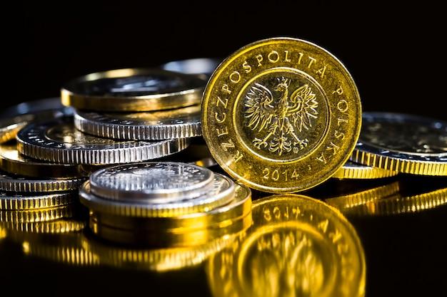 Металлические монеты польского злотого