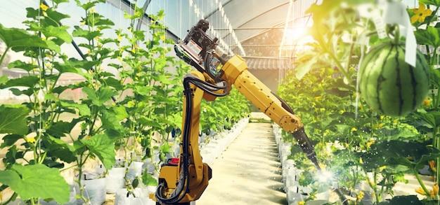 로봇과 과일과 채소의 수분.