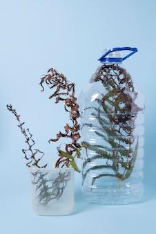 질식된 식물이 있는 오염 개념