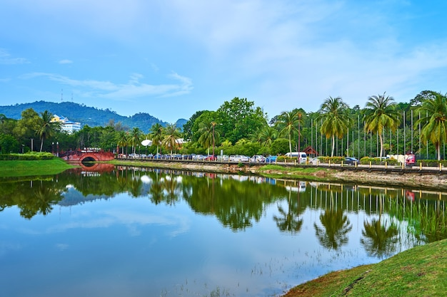 Pond in green park on tropical island. beautiful nature scenery, place to mind rest. langkawi, malaysia - 07.18.2020