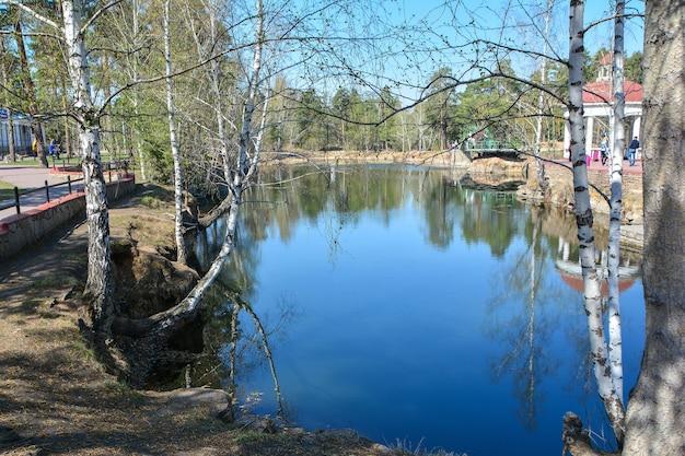晴れた春の日に公園の池