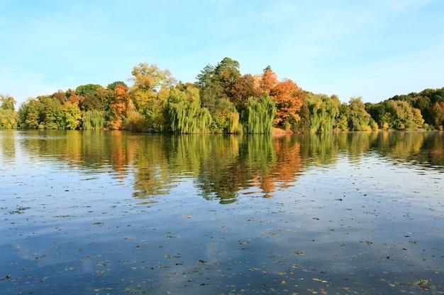 가을 공원에서 다채로운 나무의 반사와 연못 수면