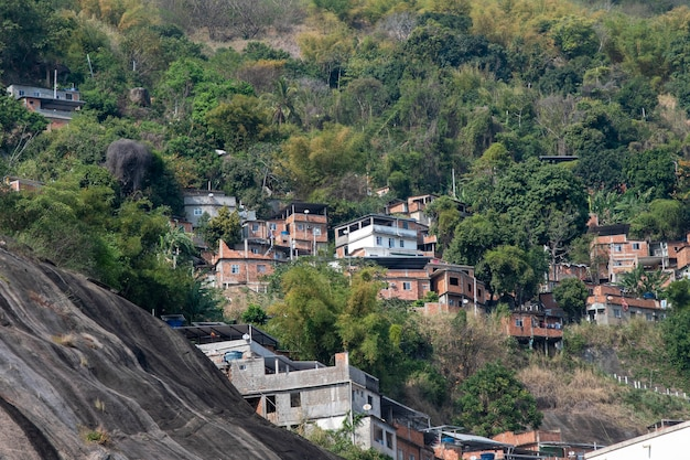 숲에 가까운 언덕에 있는 리우데자네이루 시의 가난한 공동체(빈민가)