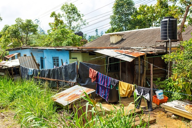 Poor dilapidated houses of the inhabitants of the island of sri lanka. jungle lodging