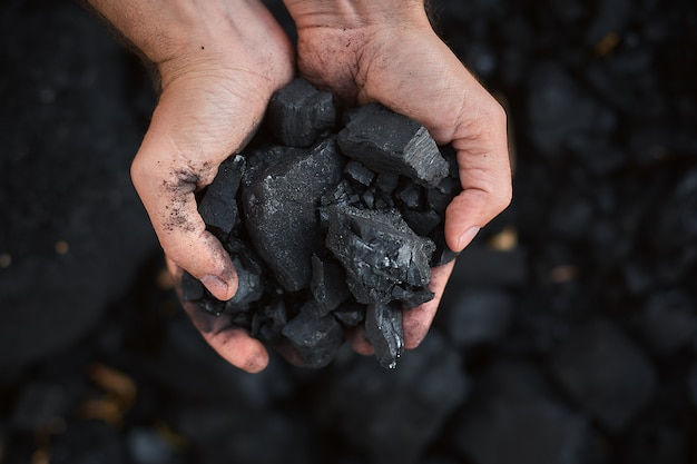 Poor middle-aged man holding the hands of stone coal for sale