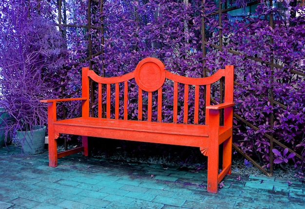 Pop art surreal style empty red wooden bench with purple shrubs in background