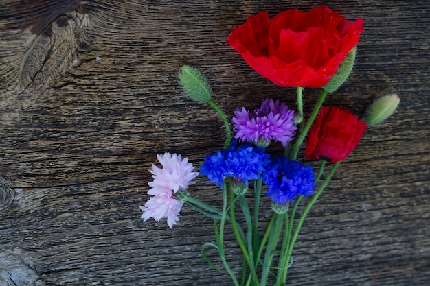 Poppy and cornflowers with  buds