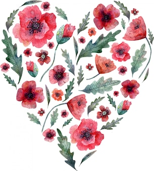 Poppy heart. red flowers and green leaves on heart shape isolated. watercolor illustration.