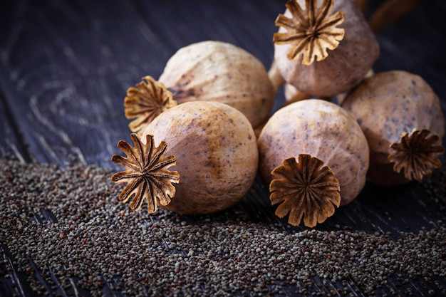 Poppy seeds and heads on wooden background. selective focus