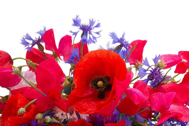 ポピー、スイートピー、コーンの花が孤立してクローズアップ
