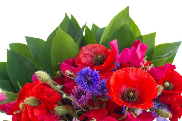 ポピー、スイートピー、緑の葉とトウモロコシの花が孤立してクローズアップ