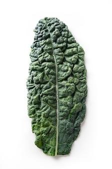 Популярный тосканский салат из капусты, изолированные на белом фоне