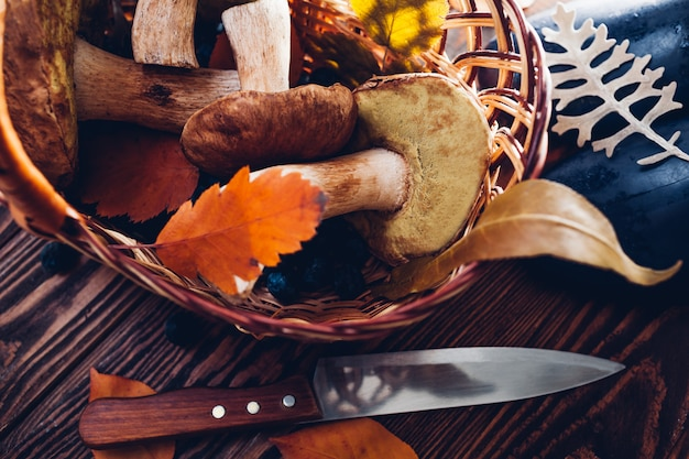 Porcini mushrooms in basket with berries and nuts on wooden table. autumn harvest with shoes. gathered fall crop