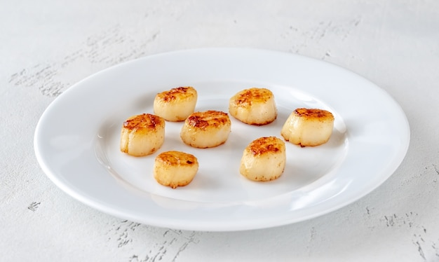 Portion of fried scallops on white plate close up