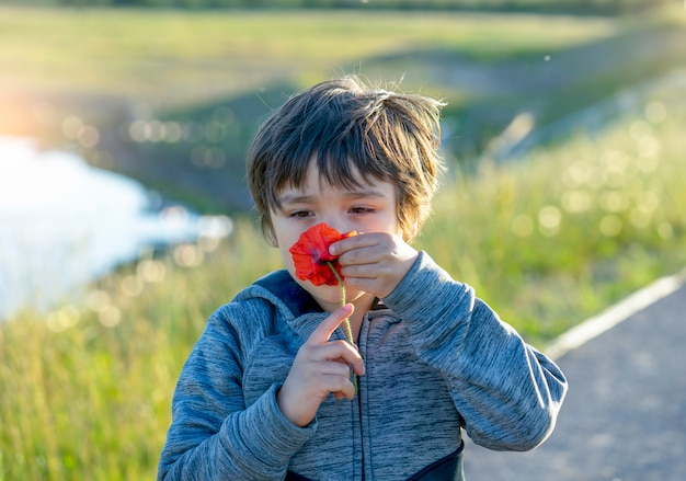 Portrait of adorable boy smelling flower, candid shot child smell sensory learning from poppy