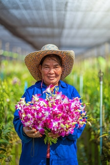 Portrait asian gardener of orchid gardening farm, the purple orchids are blooming in the garden farm, happiness worker holding bundle of blossom, purple orchids in farming of bangkok, thailand.