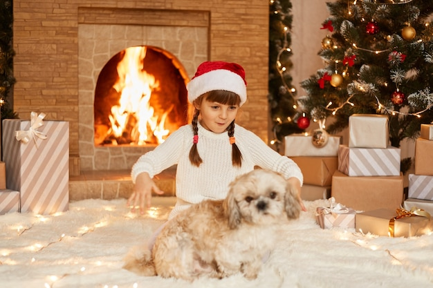 Portrait of astonished excited little girl wearing white sweater and santa claus hat, playing with her puppy in festive room with fireplace and xmas tree.