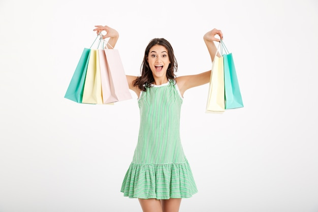 Portrait of an attractive girl in dress holding shopping bags