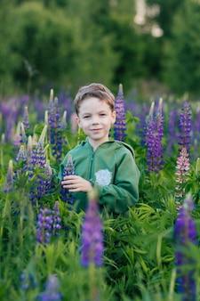 Portrait of a boy in a summer field of lupine