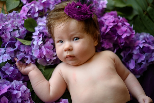 Portrait of a cute little girl (six months old). baby lies in the colors of purple hydrangea