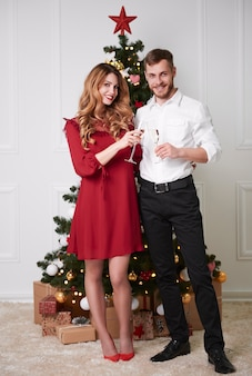 Portrait of elegant couple toasting