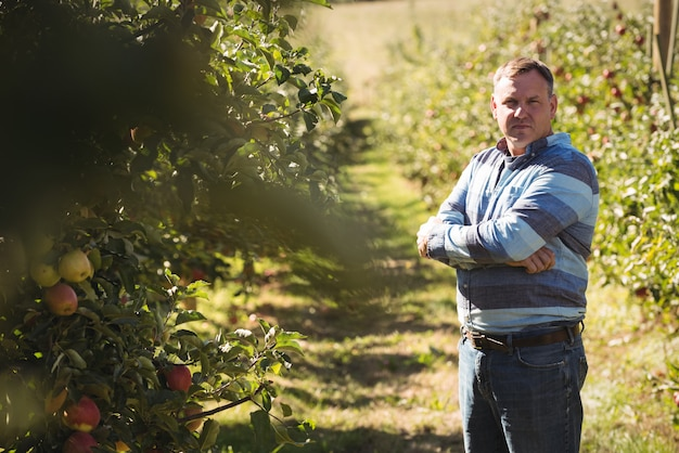 Portrait of farmer standing with arms crossed in apple orchard