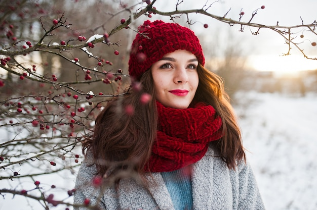 Portrait of gentle girl in gray coat , red hat and scarf near the branches of a snow-covered tree.