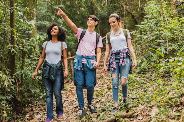 Portrait of a group of hiker friends walking in the jungle