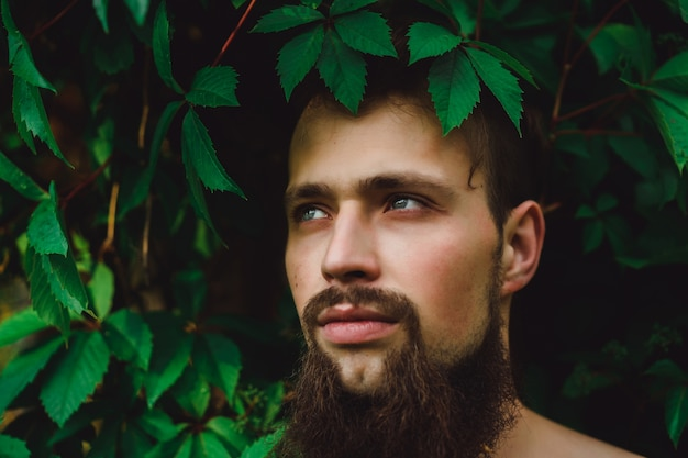 Portrait of a handsome man on green summer leaves. fashion brunette man with blue eyes, portrait in wild leaves (grapes), natural background.
