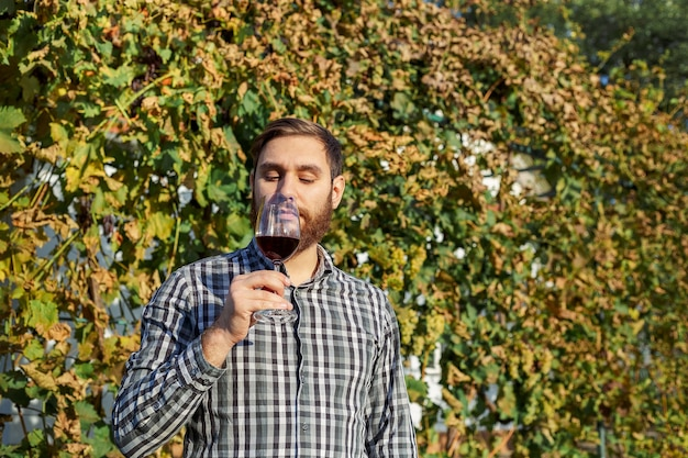 Portrait of handsome wine maker holding in his hand a glass of red wine and tasting it, checking wine quality while standing in vineyards. small business, homemade wine making concept.