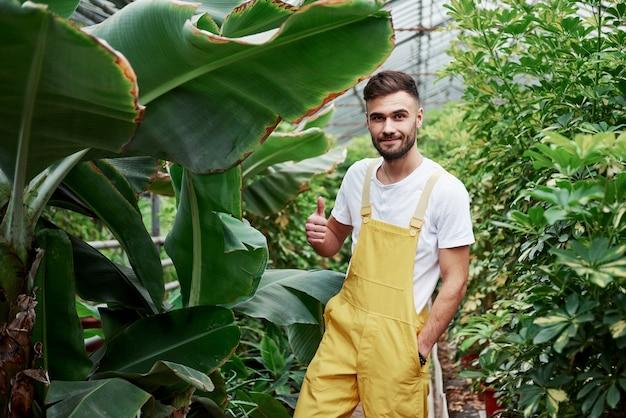 Portrait of happy attractive male farmer working in a greenhouse.