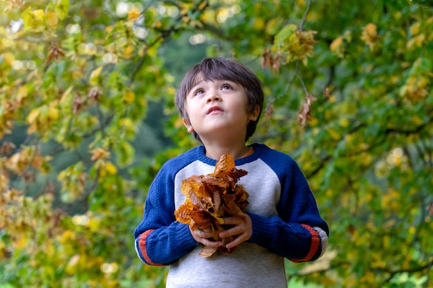 Portrait of a kid holding autumn leaves