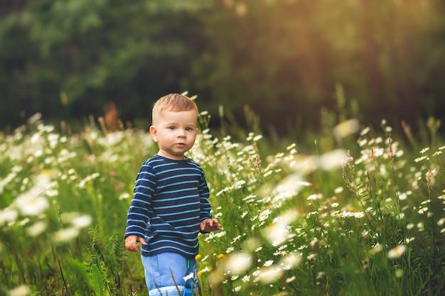 Portrait of a little boy among flowers