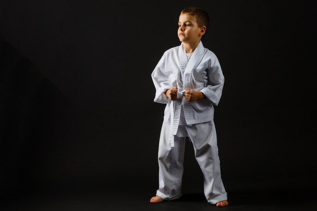 Portrait of little boy training karate isolated on gray