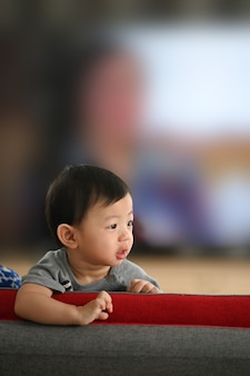Portrait of little cute baby boy standing on sofa in living room.
