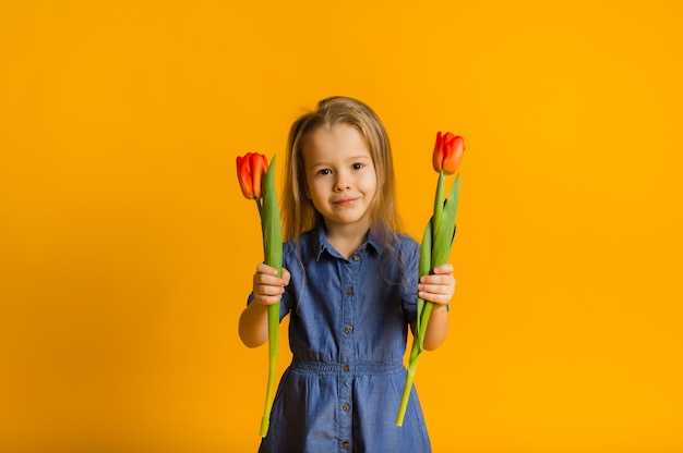 Portrait of a little girl in a blue dress standing with two red tulips on a yellow wall with a copy of the space