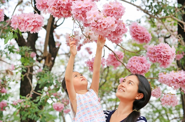 Portrait little girl and her mom touching beautiful tabebuia rosea blooming in spring season at garden outdoor.
