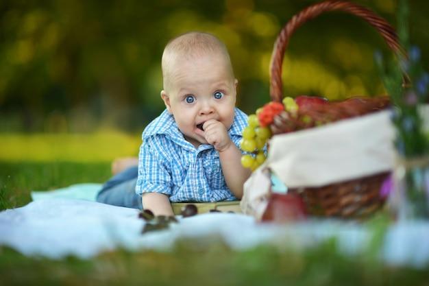 Portrait of little happy boy have a picnic