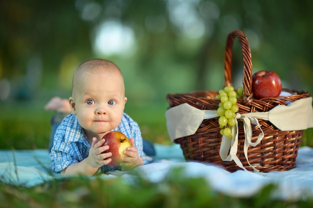 Portrait of a little happy boy  at the picnic